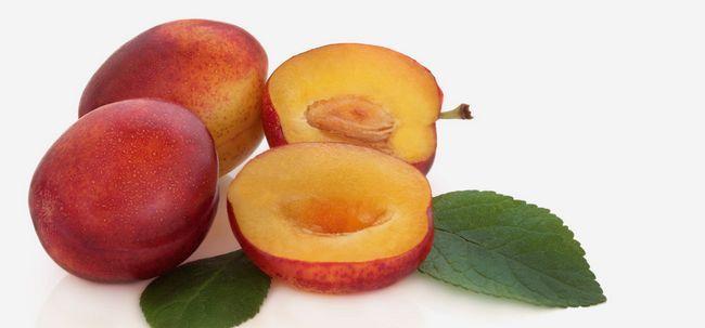 10 Avantages pour la santé incroyable de prune victoria