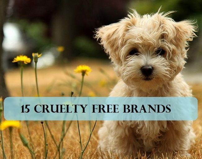 15 Marques de maquillage qui ne testent pas sur les animaux + alternatives à l`expérimentation animale