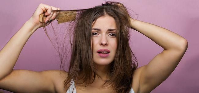 16 Herbes Miracle qui empêchent la perte de cheveux