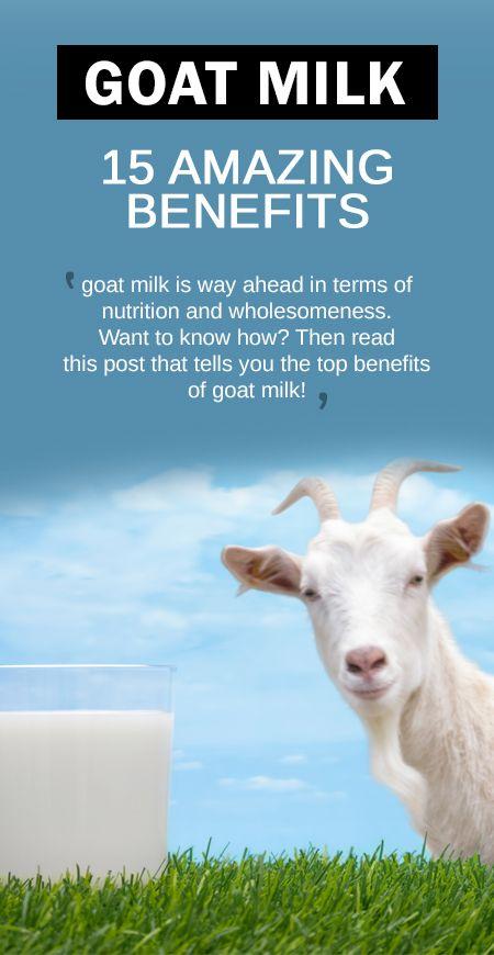 18 Avantages pour la santé incroyable de lait de chèvre