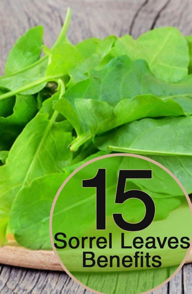 19 Avantages pour la santé incroyable de feuilles d`oseille