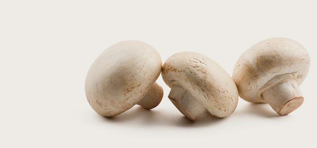 21 Les meilleurs avantages de champignons (Khumbi) pour la peau, les cheveux et la santé