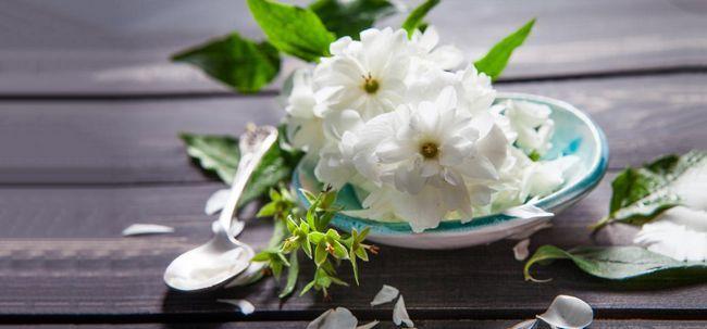 Avantages étonnants de jasmin arabian pour la peau, les cheveux et la santé