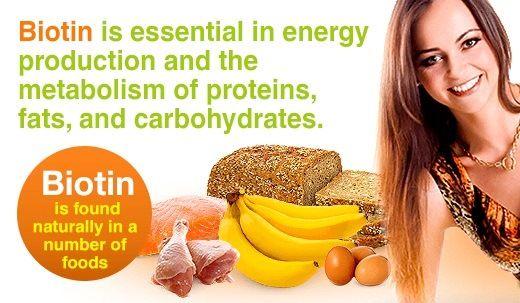 Aliments riches - Biotin riche source de biotine