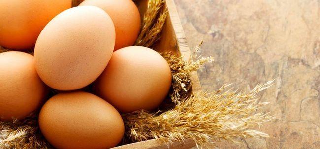 Plan de régime d`œufs - ce qui est et quels sont ses avantages et les inconvénients?