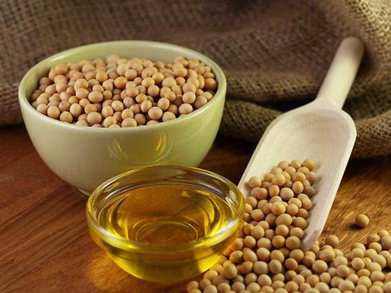 Les aliments riches en calcium (riche source de calcium)