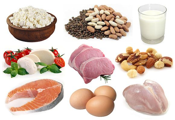 Les aliments riches en protéines (aliments riches en protéines)