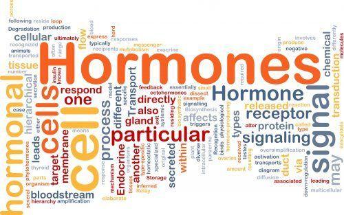 Comment équilibrer les hormones?