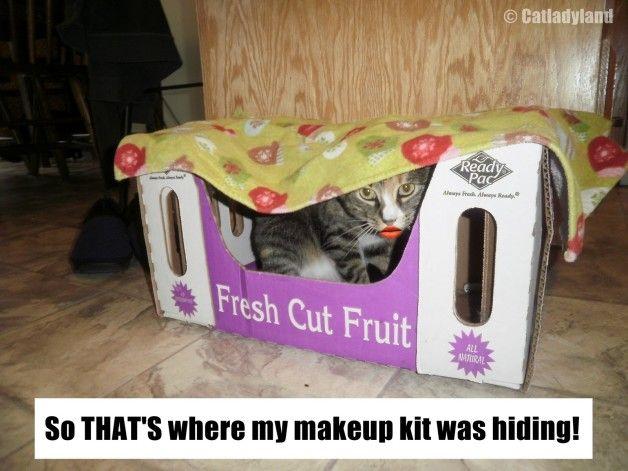 Le cas curieux de maquillage manquant!