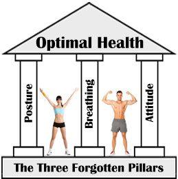 Les trois piliers oubliés de la santé optimale